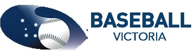 BV Logo Header